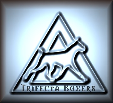 To TRIFECTA BOXERS Home Page